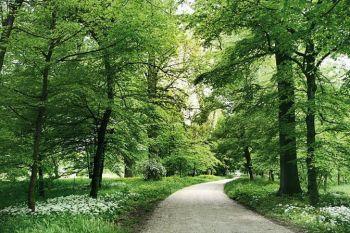Estate al Castello Reale e nel Parco di Racconigi