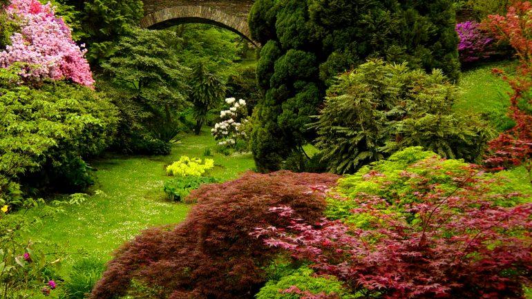 Giardini Botanici di Villa Taranto: un viaggio tra tutti i continenti