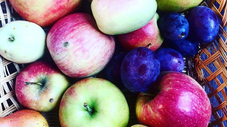 La mela Ciucarina