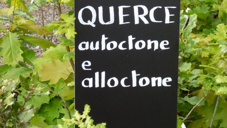 Andar per vivai: da Como a Lecco, la Via dei Laghi (Lombardia/3)