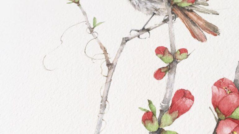 Il cotogno da fiore e l'uccellino