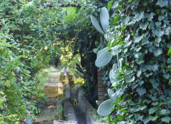 Villa Trinità e il giardino nella lava