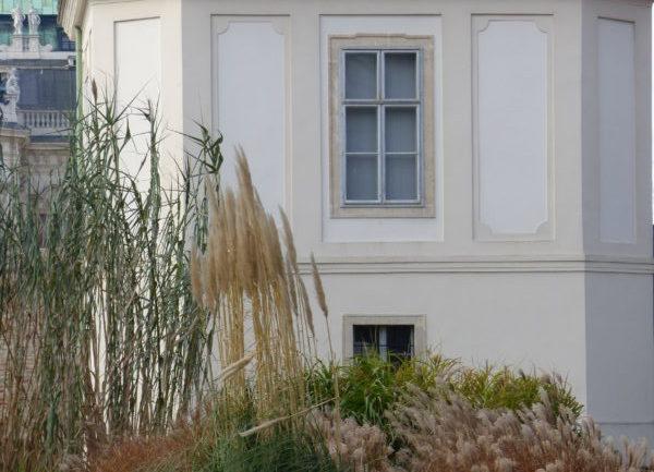 L'Orto botanico dell'Università di Vienna