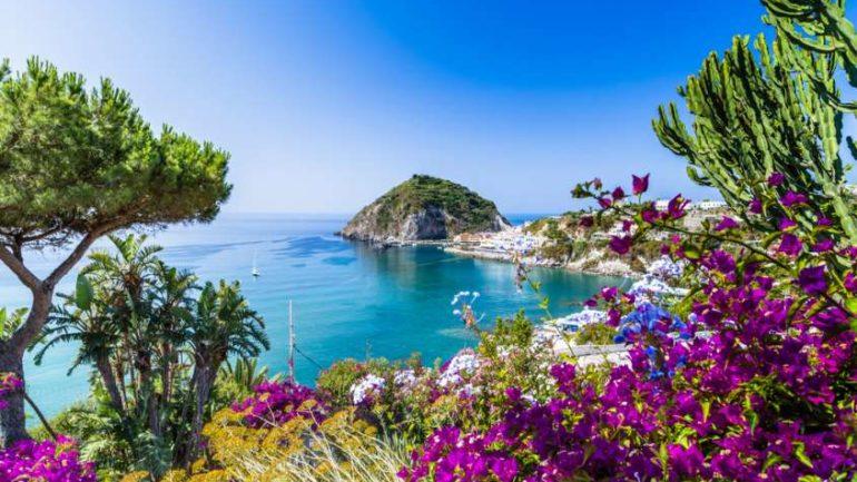 Andar per vivai in Campania