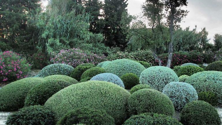 Andar per vivai e giardini in Toscana (e se volete anche cantine)