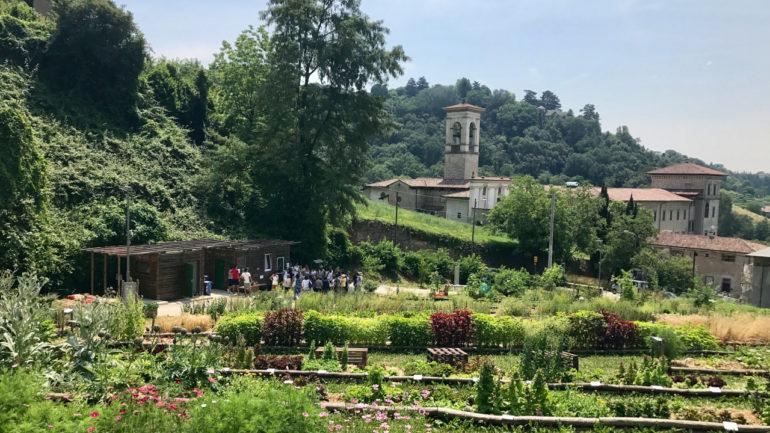 La Valle della Biodiversità e le piante alimentari