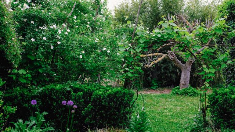 I giardini segreti di Ravenna